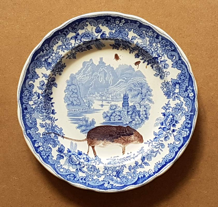 blue and white villeroy and boch burgendland earthenware plate printed with dead mouse laser decal